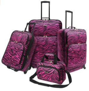 US Traveler Fashion Zebra Spinner Set